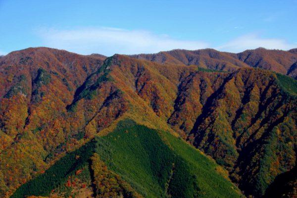 甲武信ヶ岳周辺エコパーク